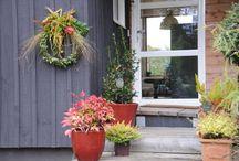 Noël au jardin / Créer votre ambiance pour Noël dès votre jardin en décorant votre entrée, vos bords de fenêtres...