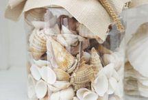 Deniz Kabukları ve Taşları / Seashells and Sea Glasses
