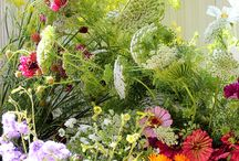 """Our flowers taken by Emma Harris stunningly talented """"A Quiet Style"""" Blogger! Do look her site."""