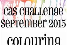 HLS September 2015 CAS Challenge