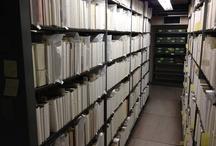 Rubenstein Library Renovation