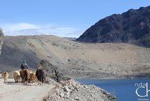 Tour Los Andes en Mountain Bike / Una excursión en bicicleta para pedalear por el corazón de los andes, rodeados de Lagunas, Glaciares y paisajes únicos.