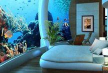 Acuarios mágicos / ¿Quién no ha soñado con vivir en el mar? Con estos acuarios el sueño podría ser real.
