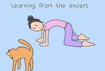 YOGA LIBEREC / How to do yoga in Liberec