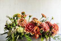 Sonbahar-Kış Çiçek
