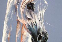 Paulina stasikowska beautiful horses
