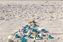 Beachy - Christmas