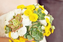 Weddings by color: Yellow / Haber Event Group is an Event Planning company serving all of Southern California. We are based out of Santa Monica. www.HaberEventGroup.com * (818) 486-2111. / by Haber Event Group - Santa Monica, CA