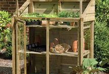 Grow your own / Today's project, tomorrow's Sunday lunch.  Everything you need to grow your own fruit and vegetables.  GYO
