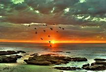 Sunsets / May every SUNRISE hold more PROMISE and every SUNSET hold more PEACE... / by Nita Merrill