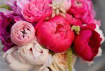 Wedding Theme - Stylish Floral Brights