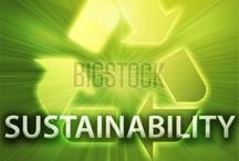 Bio Eningeering / by Green College