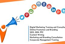 About Us / About iVIPANAN Digital Marketing Services