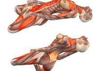 13 important Yoga poses
