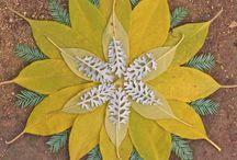 Mandala n flower art