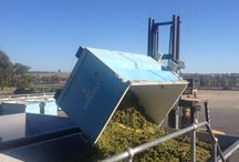 Vintage 2014 / Some highlights of the 2014 vintage at the Cumulus Estate Wines vineyard & winery