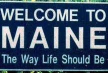 Destination Maine! / by Darlene Bagley