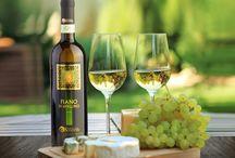 Fiano di Avellino / L'unicità di un vitigno, l'eccellenza di un territorio la sapienza nel produrlo: Il Vino...Poesia imbottigliata! #fiano #isignoridelvino #lapio
