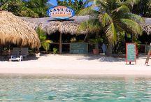 Cruise 10yr anniversary @salon / Cruises