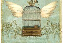 Birdcage Canvas