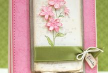 Stamping & Cards / by Erin West