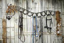 horse tricks/hacks/diy