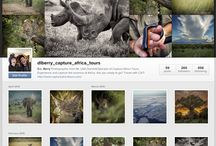 Instagram Feed / My Instagram feed from Africa and Beyond.