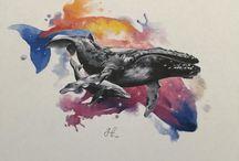 Drawings / Paintings