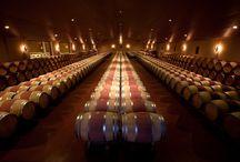 Château Chantegrive / visite du vignoble et des chais au Château Chantegrive dans les Graves à Bordeaux Réservez avec winetourbooking.com