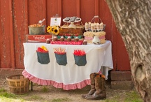Country partys  / by Megan Woodson