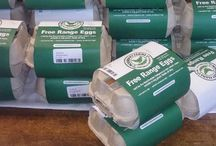 Organic food in SA / Places to buy or eat good organic food