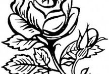 The Passionate Rose / A collection of experiences and creative thoughts.