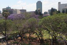 """Zimbabwe / Dit bord gaat over #zimbabwe 'The world of wonders""""gelegen tussen #zuidafrika #zambia #botswana en #mozambique  je kunt hier de big five vinden en de indrukwekkende #victoriafalls. De hoofdstad is Harare.  Meer weten of op vakantie naar #zimbabwe neem dan contact met me op"""