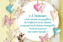 ✑ Les Citations / Quotes