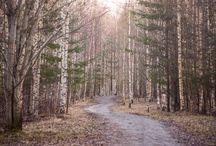 Inspiration - Photo - Nature/Outdoor