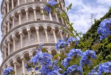 Italy 2 / by Susan Cornecelli Smith