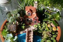 terrario como sítio