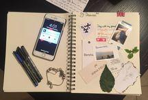 My schetcing diary