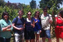 Sonoma Wine Country Bike Tours