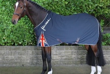 Horse Rugs / A selection of high quality Horse Rugs available from Edgemere LTD.Equestrian Supplies for Horse and Rider.