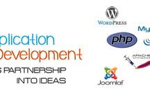 web application / web application development