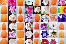 цветв