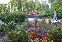גן על הגג / http://tamiporath.co.il/shop/