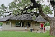 Accomodation in Kruger National Park