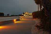 Treasure Island - Sea Turtle Friendly Lighting
