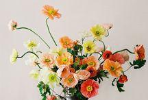 Flowers / Flower arrangements ideas