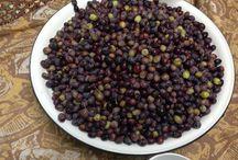 Zeytin / Sofralık zeytin (dilmelik)
