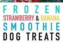 Puppy treat recipes
