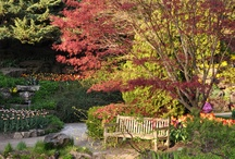 Garden Centres to  Visit