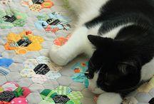 Patchwork a kočičky
